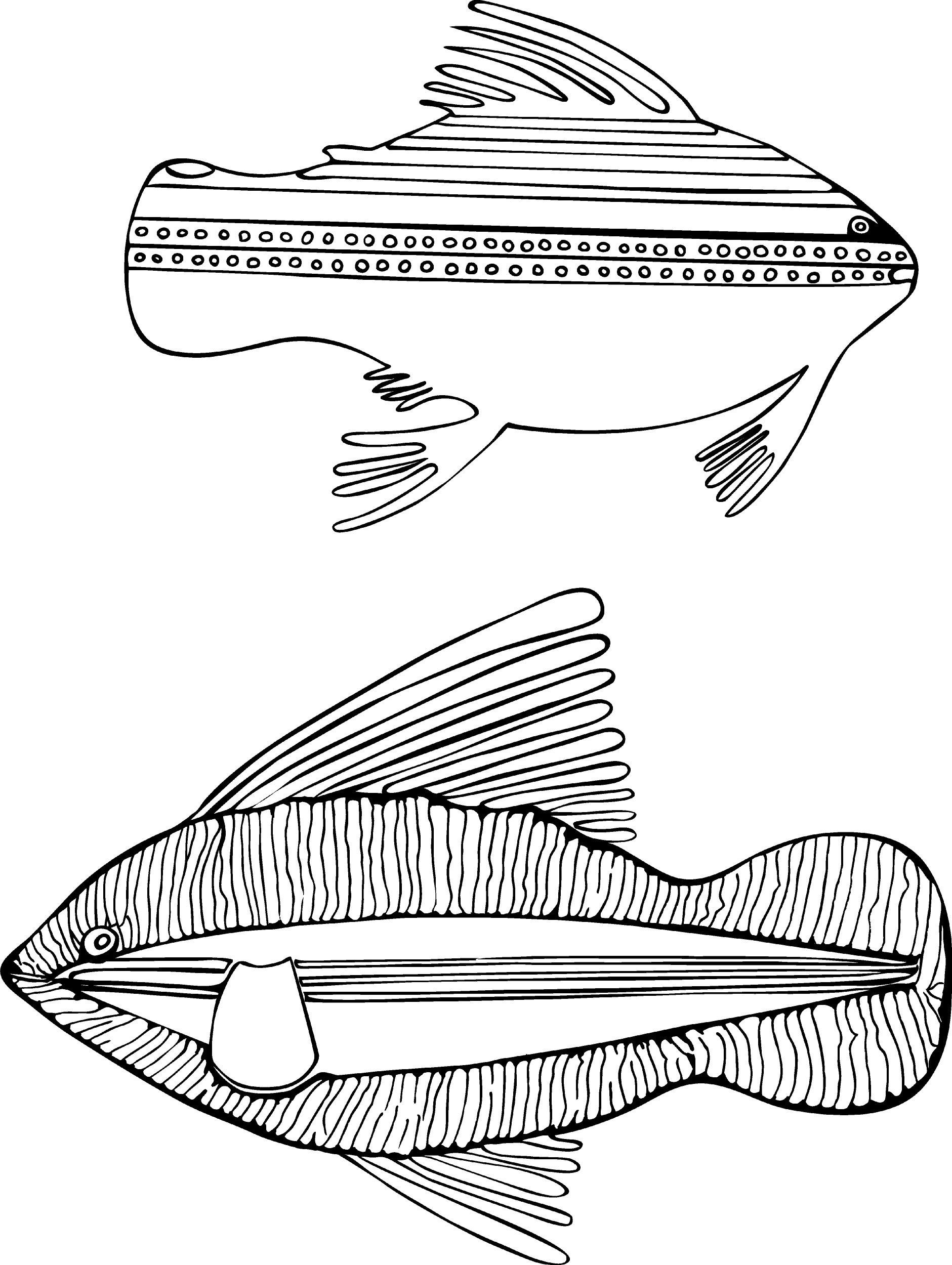 Inuit Art From Cape Dorset Coloring Book Pomegranate 9780764950223 Amazon Books