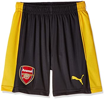 10aebc619 Puma Children s Replica Football Shorts