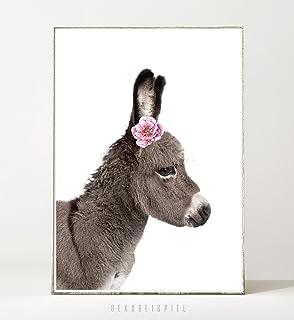 Kunstdruck / Poster FLOWER DONKEY  Ungerahmt  Esel, Bild, Kinderzimmer,  Geschenk,