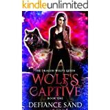 Wolf's Captive (The Dragon Wolf's Queen Book 1)