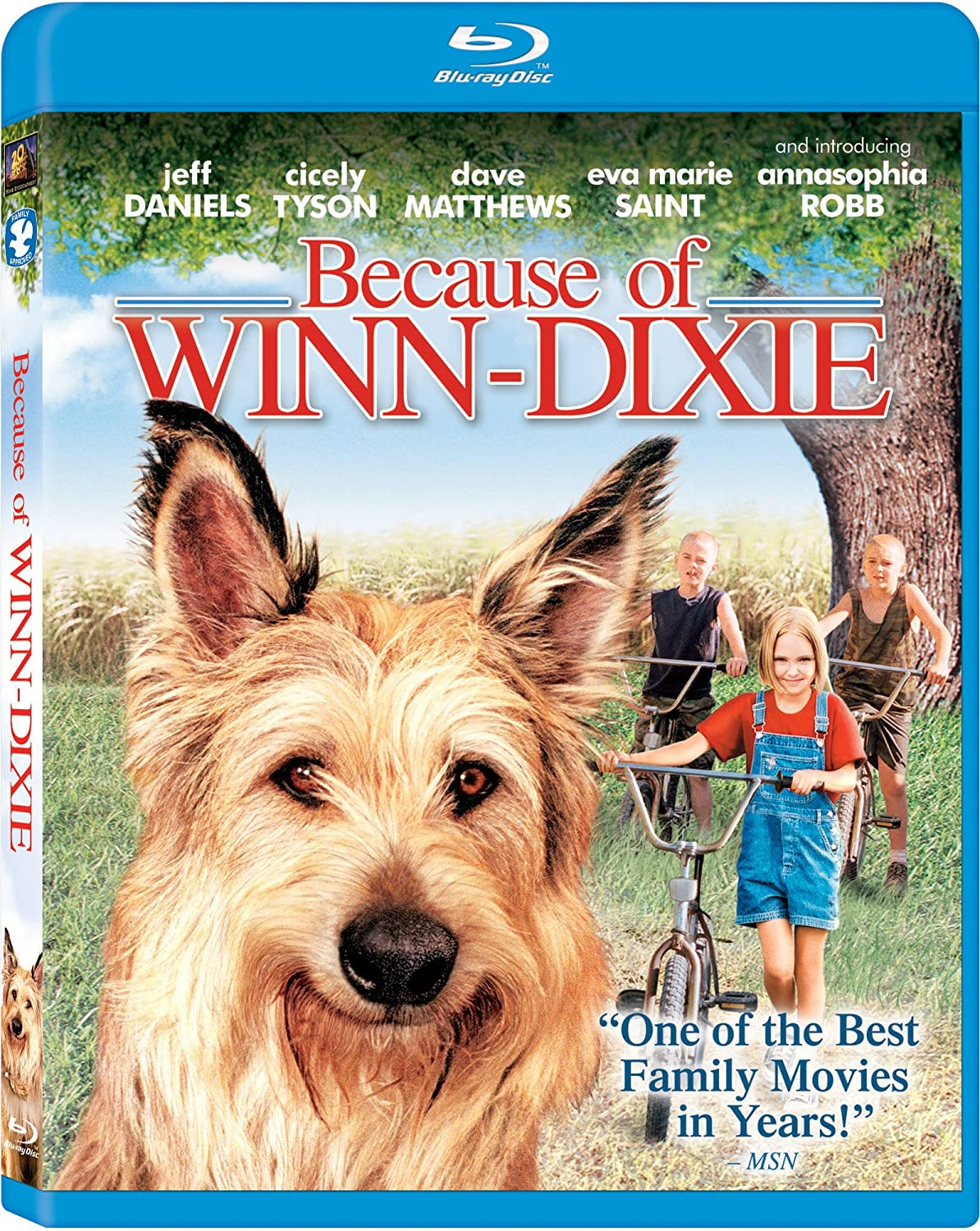 Review of winn dixie free appliances - Amazon Com Because Of Winn Dixie Blu Ray Annasophia Robb Jeff Daniels Eva Marie Saint Cicely Tyson Dave Matthews Courtney Jines Nick Price