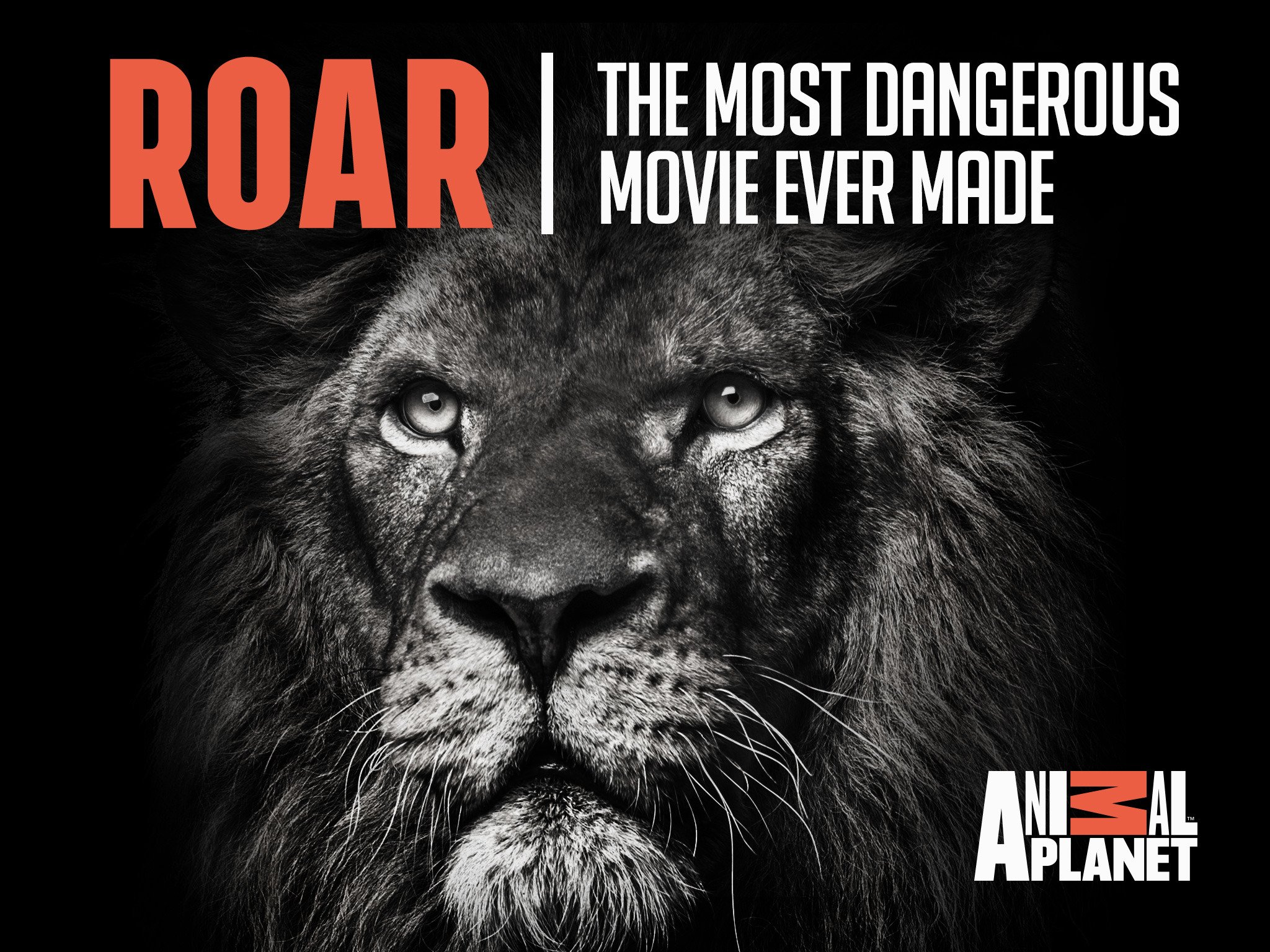 Amazon Com Watch Roar The Most Dangerous Movie Ever Made Season 1