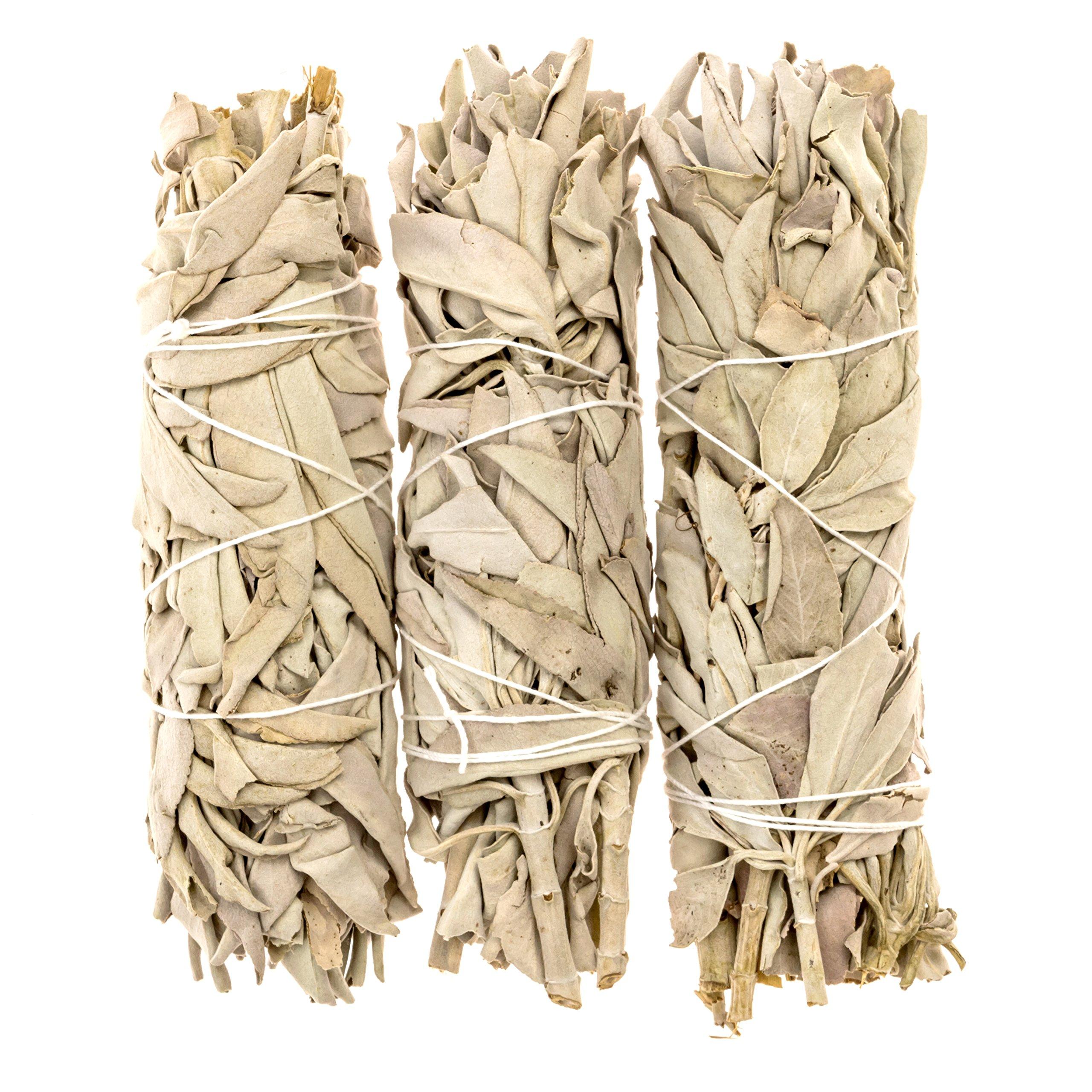Alternative Imagination Premium California White Sage Smudge Sticks - 5 Inch Medium Sized - Package of 3 by Alternative Imagination (Image #4)