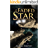 A Faded Star