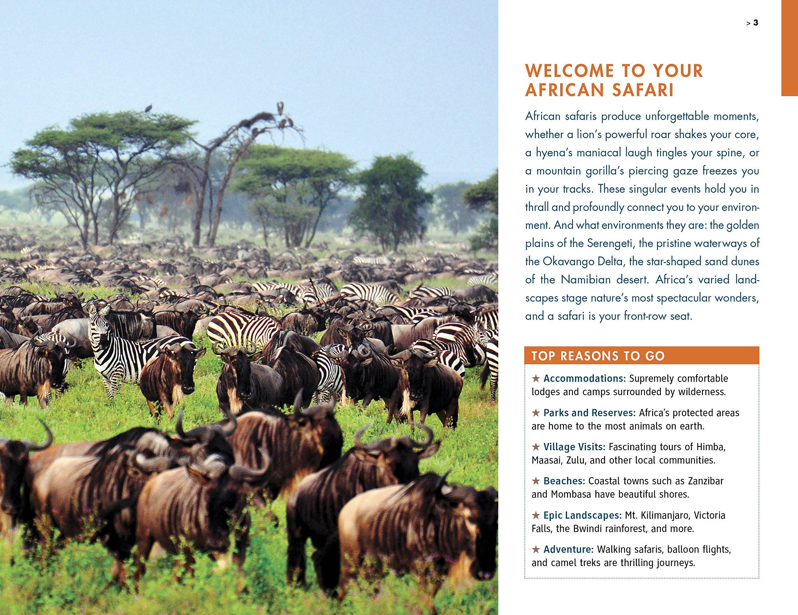 Fodor's the Complete Guide to African Safaris: with South Africa