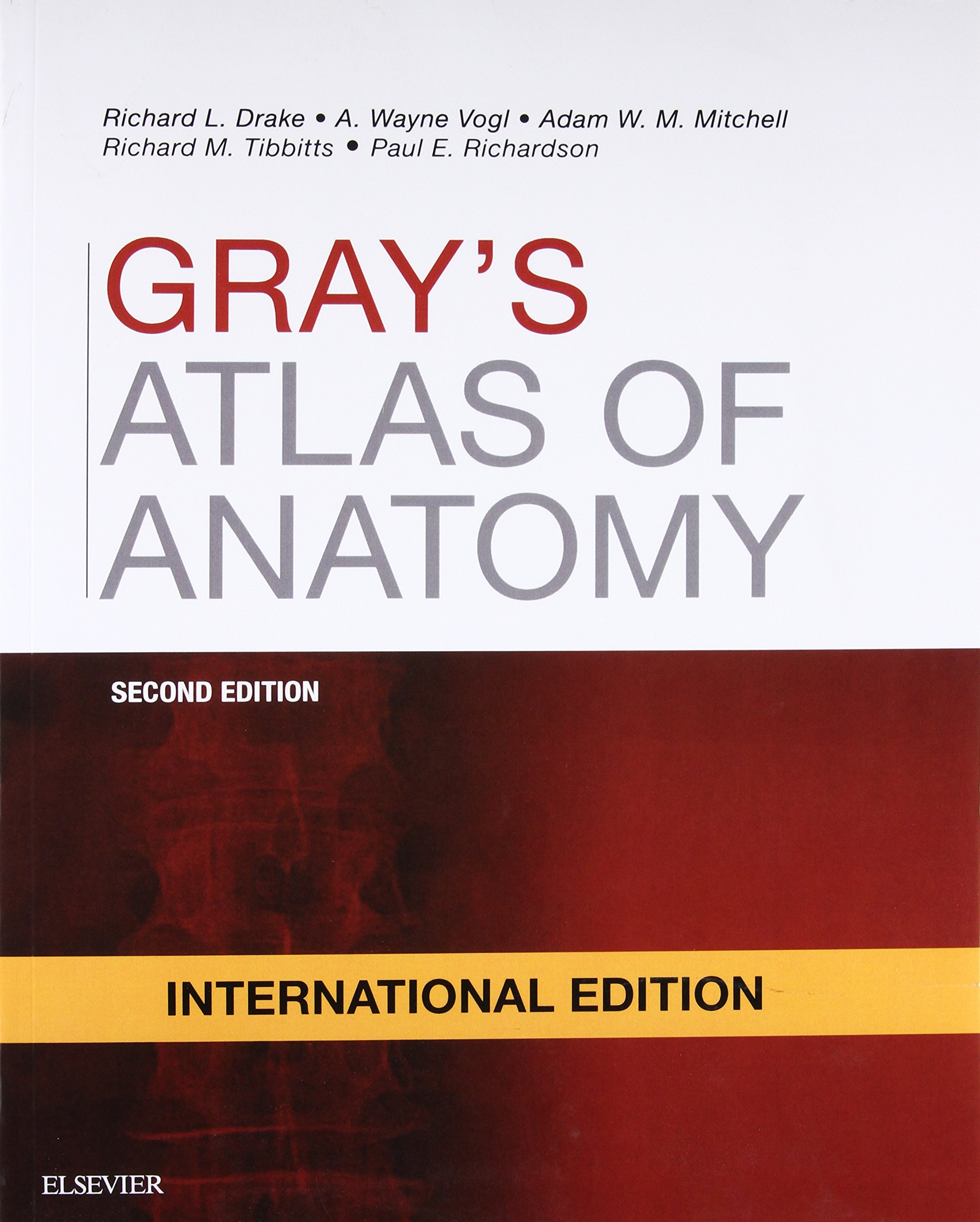 Buy Gray\'s Atlas of Anatomy, International Edition Book Online at ...
