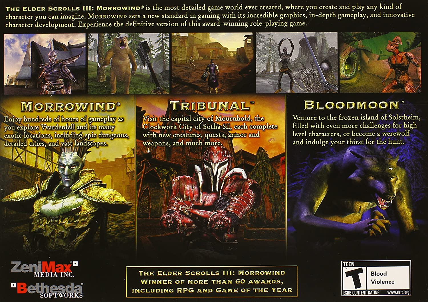 Amazon: The Elder Scrolls Iii: Morrowind, Game Of The Year Edition: Pc:  Video Games