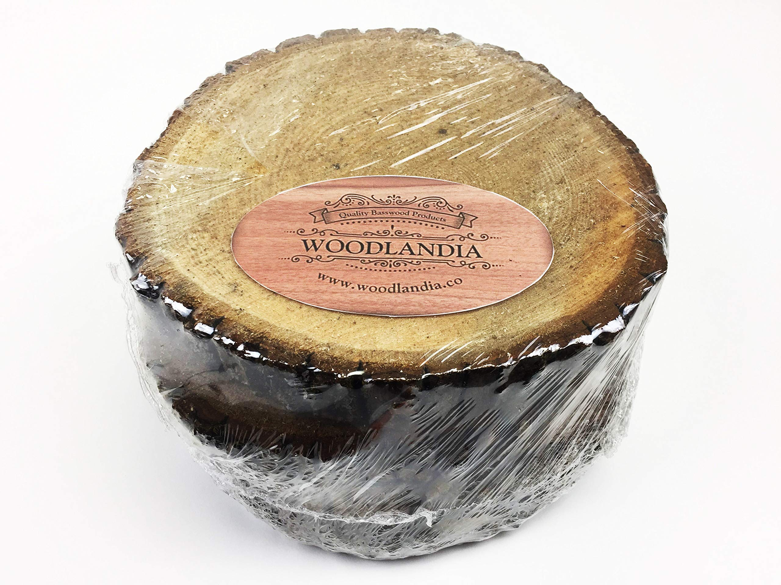Woodlandia Basswood Disk 8x1 Inches - 4 Pack by Woodlandia (Image #6)