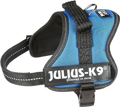 Julius-K9 Mini-Mini, 40-53 cm, Azul: Amazon.es: Productos para ...