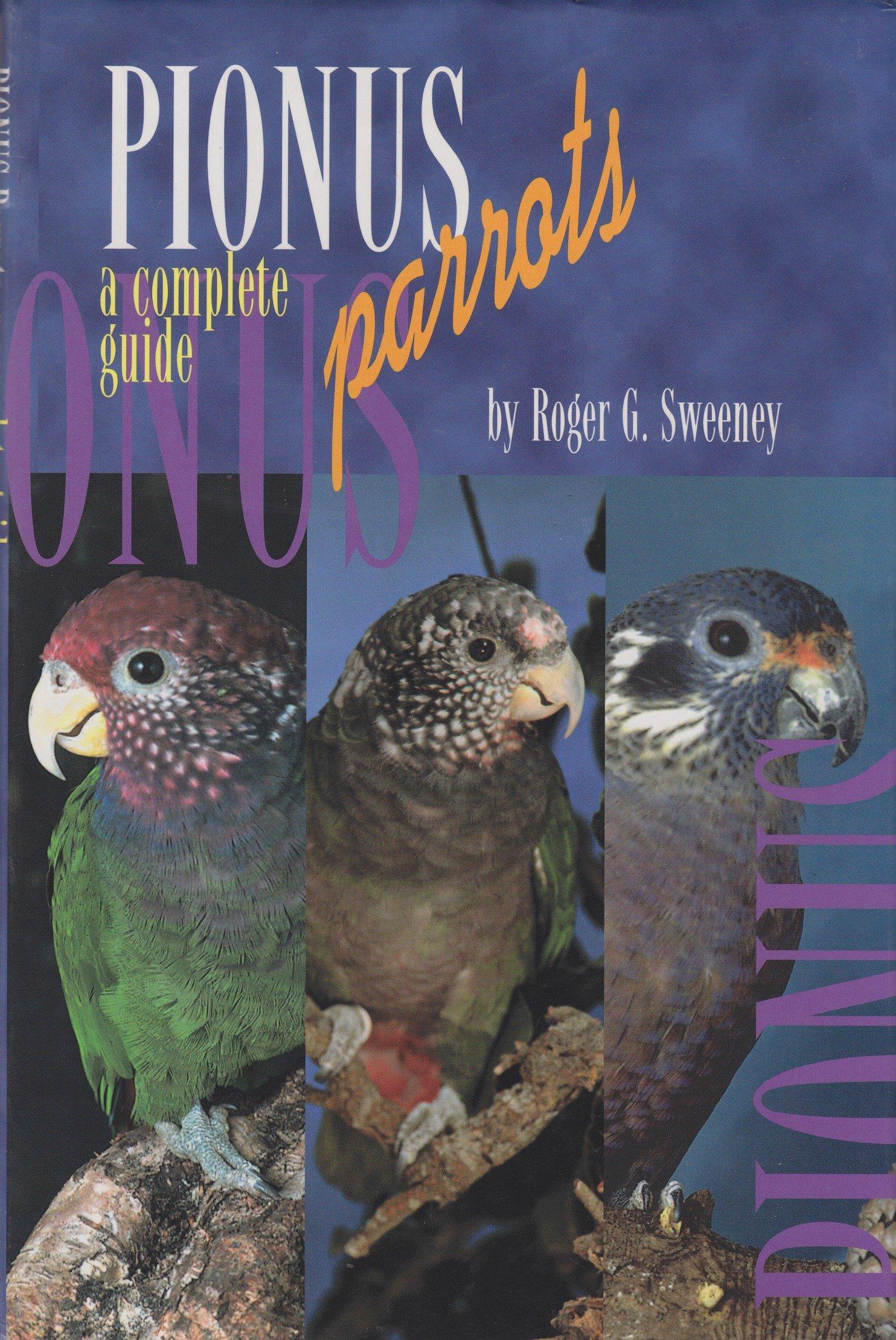Pionus Parrots: A Complete Guide