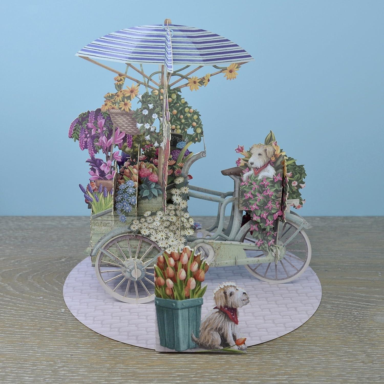 Me & Mcq 3D biglietto d' auguri –  fiore venditori bicicletta Paper D' Art 3D008