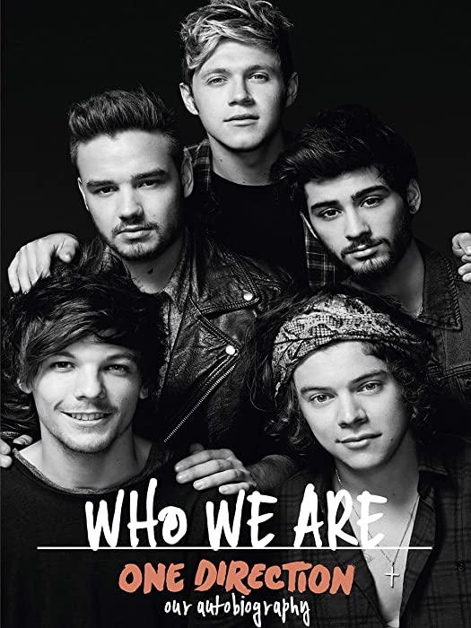 One Direction Who We are Poster Standard Size 18×24 inches