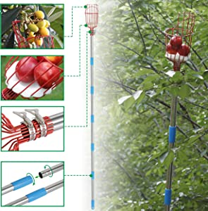 EWEE Fruit Picker Tool- Height Adjustable Fruit Picker with Big Basket - 8 FT Apple Orange Pear Picker with Light-Weight Stainless Steel Pole for Getting Fruits