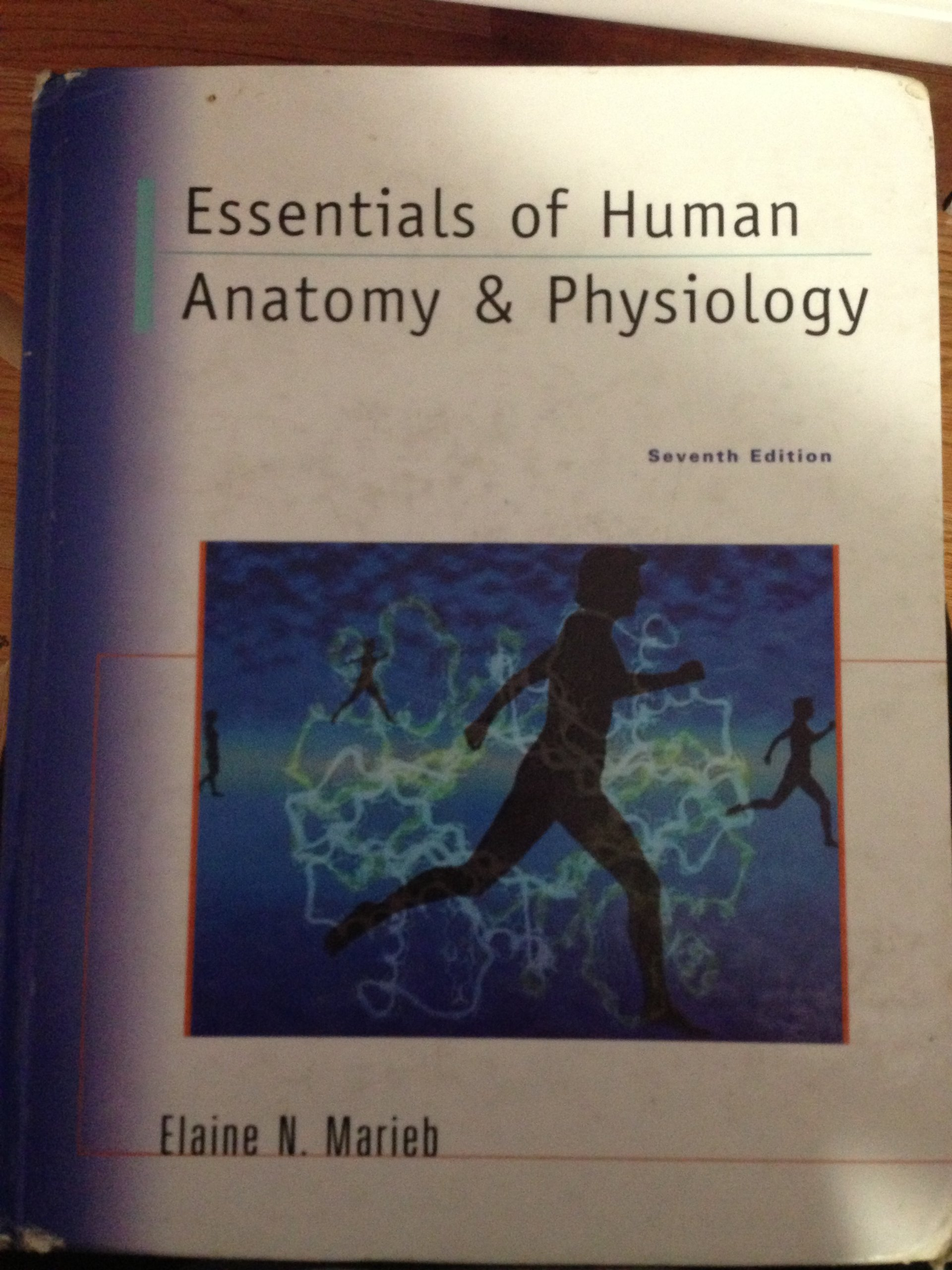 Essentials of Human Anatomy And Physiology: Elaine Nicpon Marieb ...