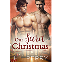 Our Secret Christmas (SHS Book 2) book cover
