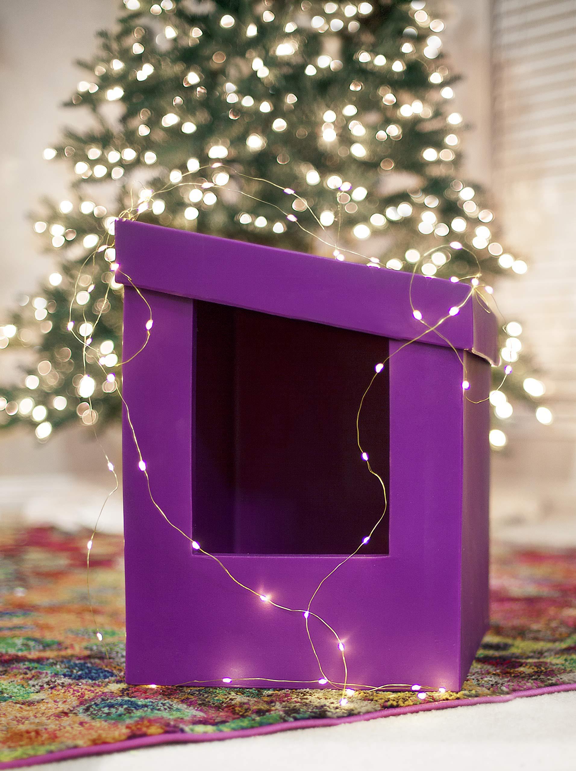 Kitangle Slope Style Modern Cat Litter Box, Purple by Kitangle