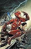 The Flash: The Rebirth Deluxe Edition Book 3