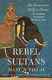 Rebel Sultans: The Deccan from Khilji to Shivaji