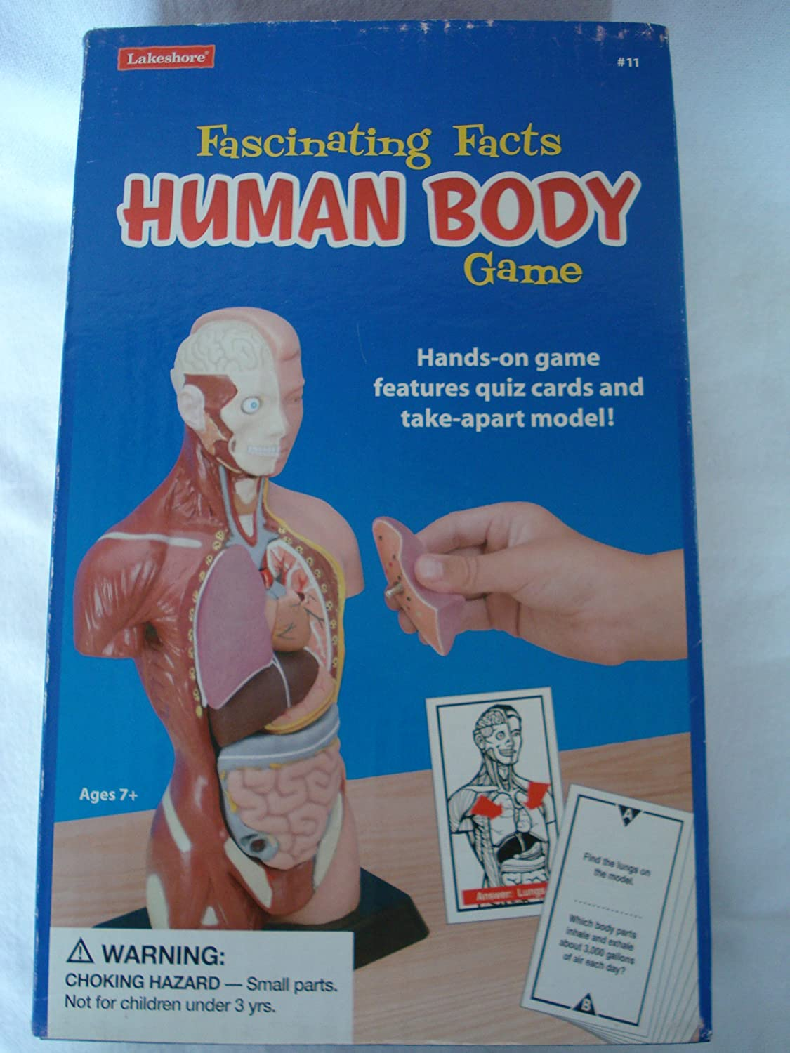 Amazon Facinating Facts Human Body Game Toys Games