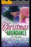 Christmas in Abundance: A Novella