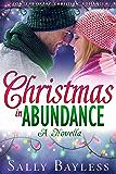 Christmas in Abundance (The Abundance Series)