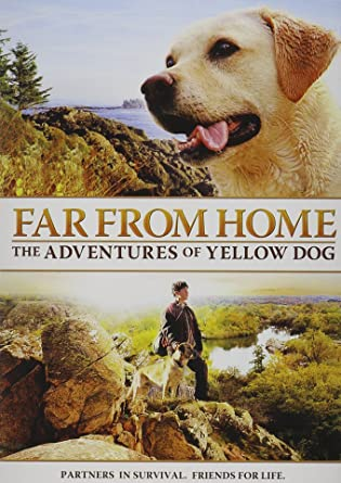 the adventures of yellow dog