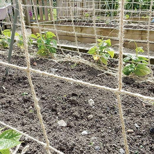 Red de Soporte para Plantas, 100% ecológica, Biodegradable, Yute ...