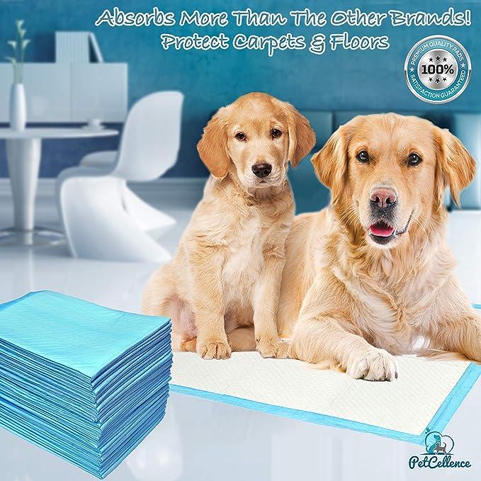 50 Empapadores Perros Cachorros Mascotas | 6 Capas Super Absorbentes Protegen Pisos Y Alfombras | Atrayente Fuerte Absorbe 200% Más Líquido | Antideslizante ...