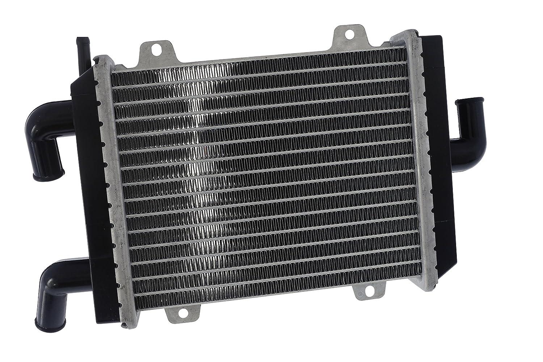 Radiatore in alluminio –  SPEEDFIGHT I + II LC Roller 2EXTREME