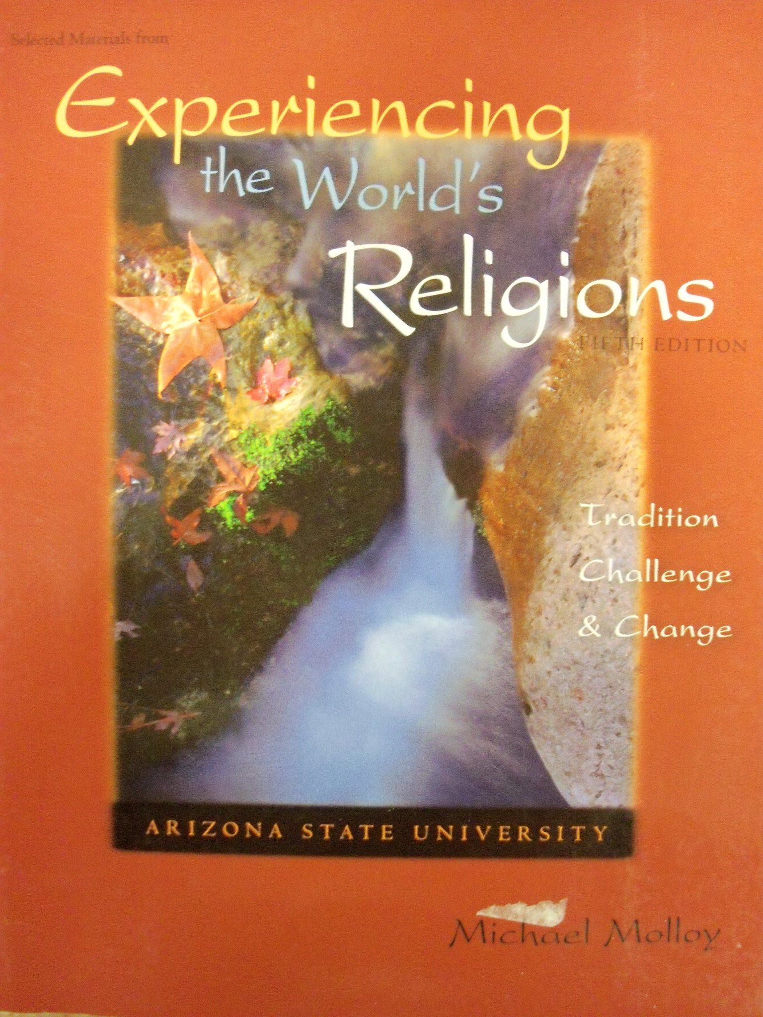Experiencing the World's Religions: Tradition, Challenge, and Change:  Michael Molloy: 9780077497705: Amazon.com: Books