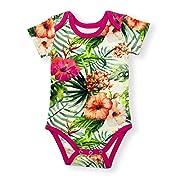 Earthy Organic Baby Short Sleeve Bodysuit Boy Girl (8 Sizes: Preemie-24M) 100% Organic Cotton (24 Months, Isla)