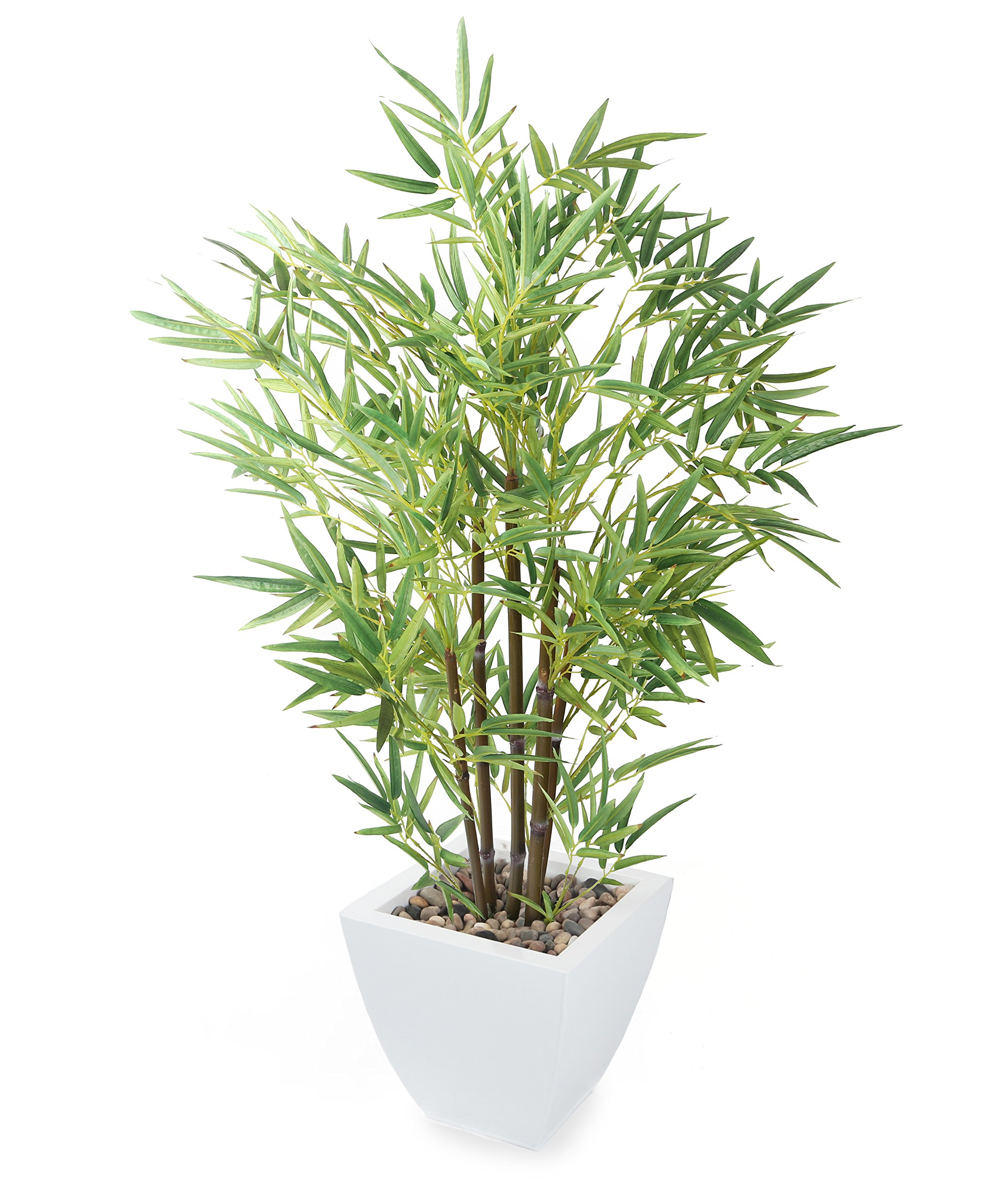 Closer To Nature 3ft 6-inch Mini Bonsai Bamboo Tree by Closer2Nature