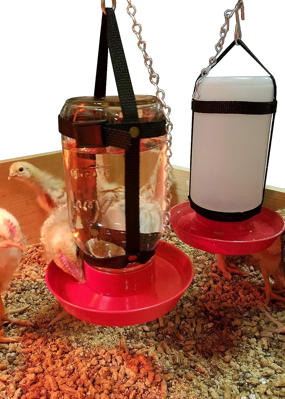 Your Happy Chicks 1 Qt. Hanging Harness (Adjustable-Glass & Plastic Jars)