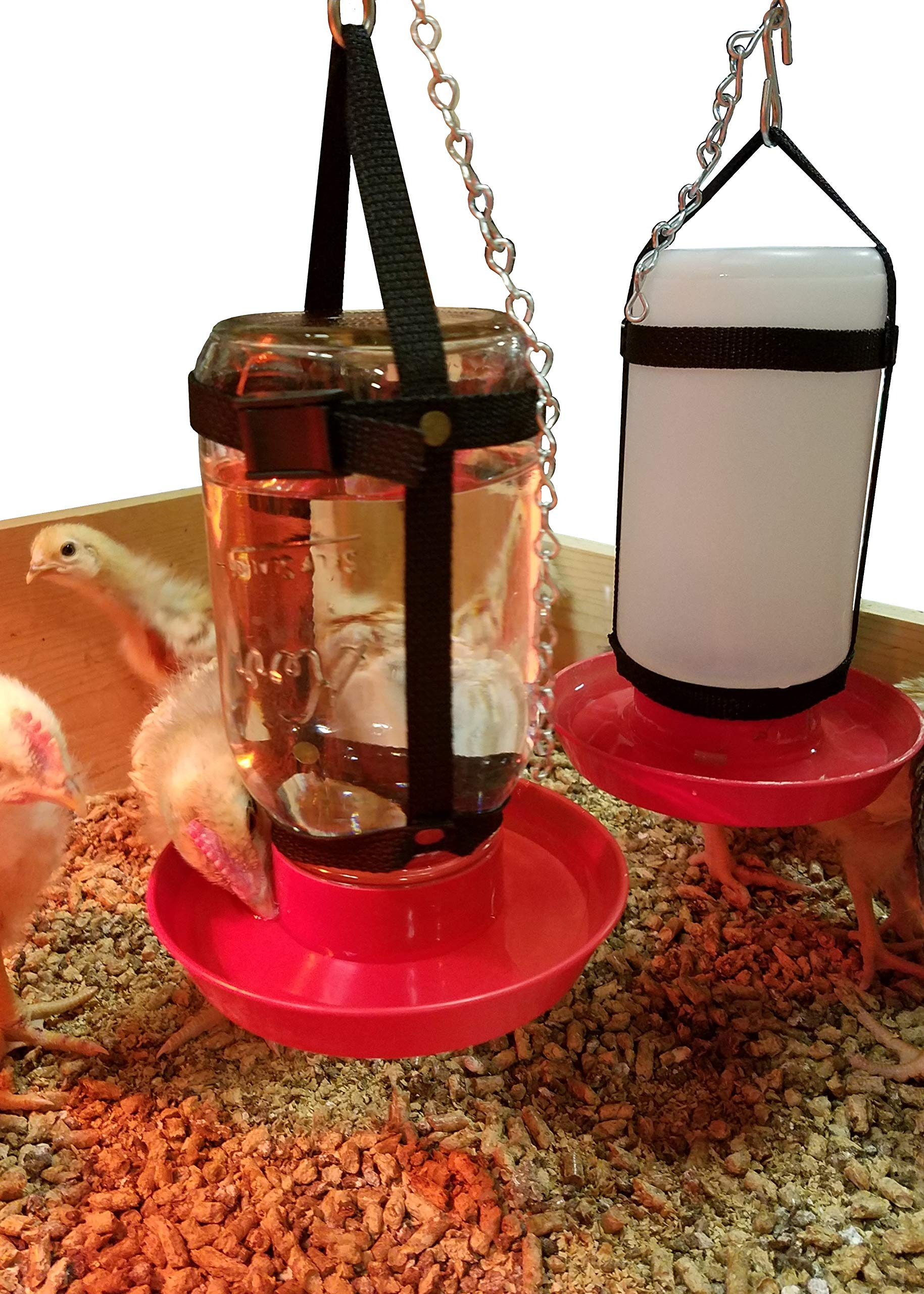 Your Happy Chicks 1 Qt. Hanging Harness (Adjustable-Glass & Plastic Jars) by Your Happy Chicks