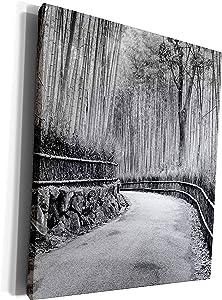 3dRose Danita Delimont - Gardens - Asia, Japan, Kyoto. Walkway through Arashiyama Bamboo Grove. - Museum Grade Canvas Wrap (cw_225859_1)