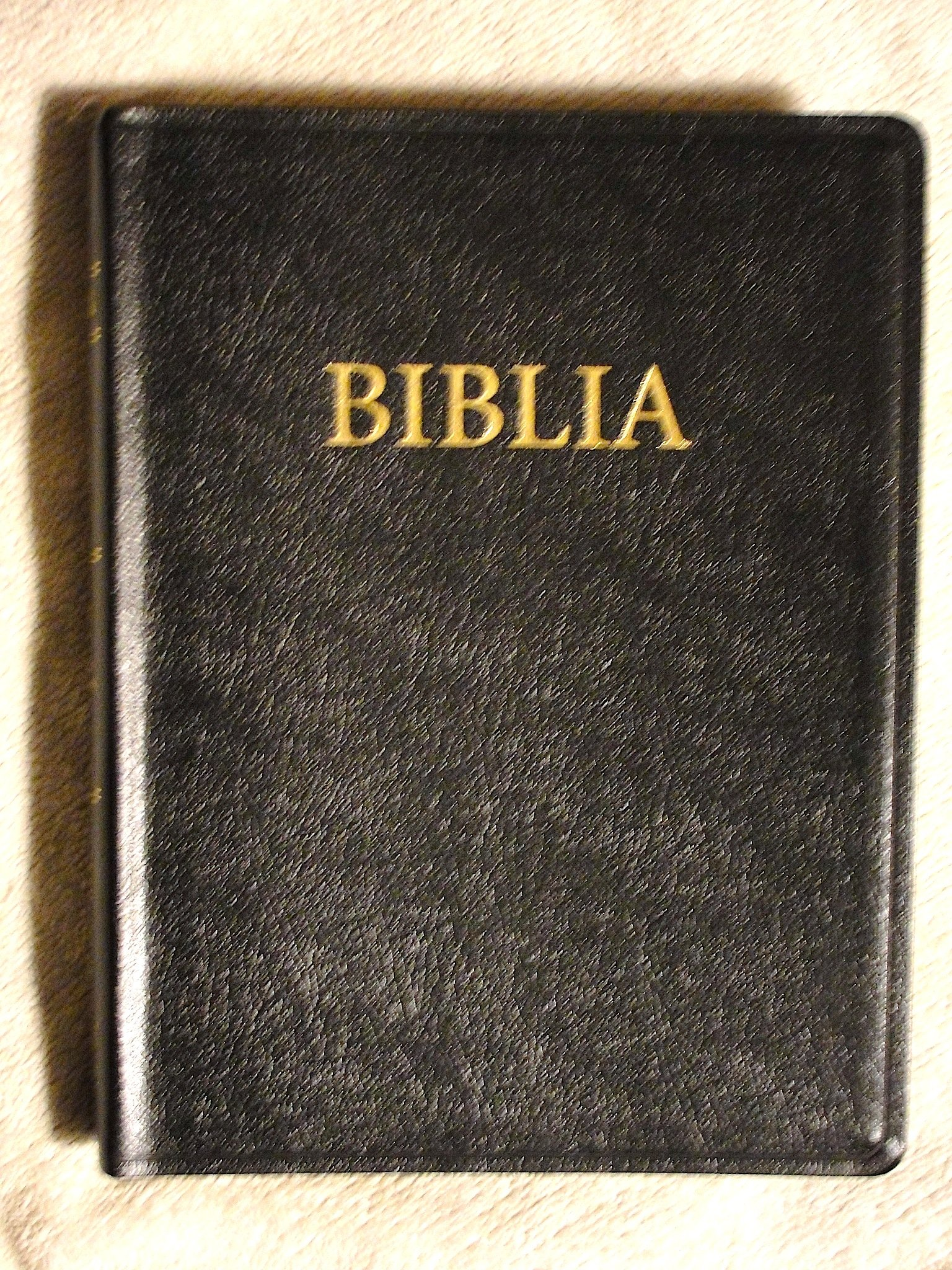 Romanian Large Print Bible, Leather, New Faith Translation pdf epub