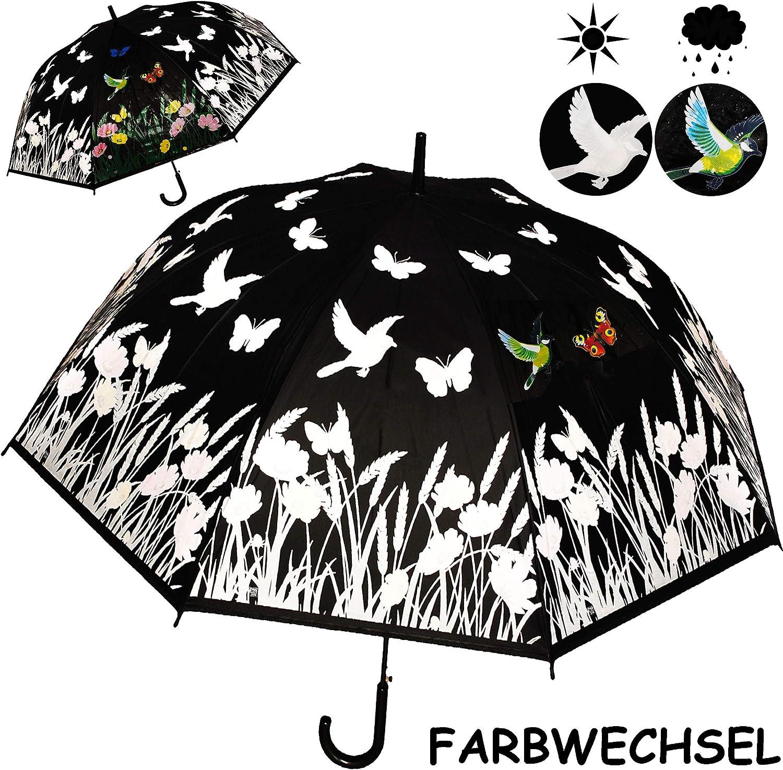 Name Blumen /& Schmetterlinge inkl Regenschirm Farbwechsel bei Regen /Ø 120 cm alles-meine.de GmbH gro/ßer XL /_ Automatik gro/ß // Auto.. Erwachsene /& Kinder 2 Personen