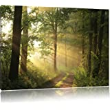 Forest in winter, painting on canvas, XXL Pictures completely framed with large wedge frames, wall art print picture with frame, cheaper than painting or picture, no posters or poster, Leinwand Format:120x80 cm