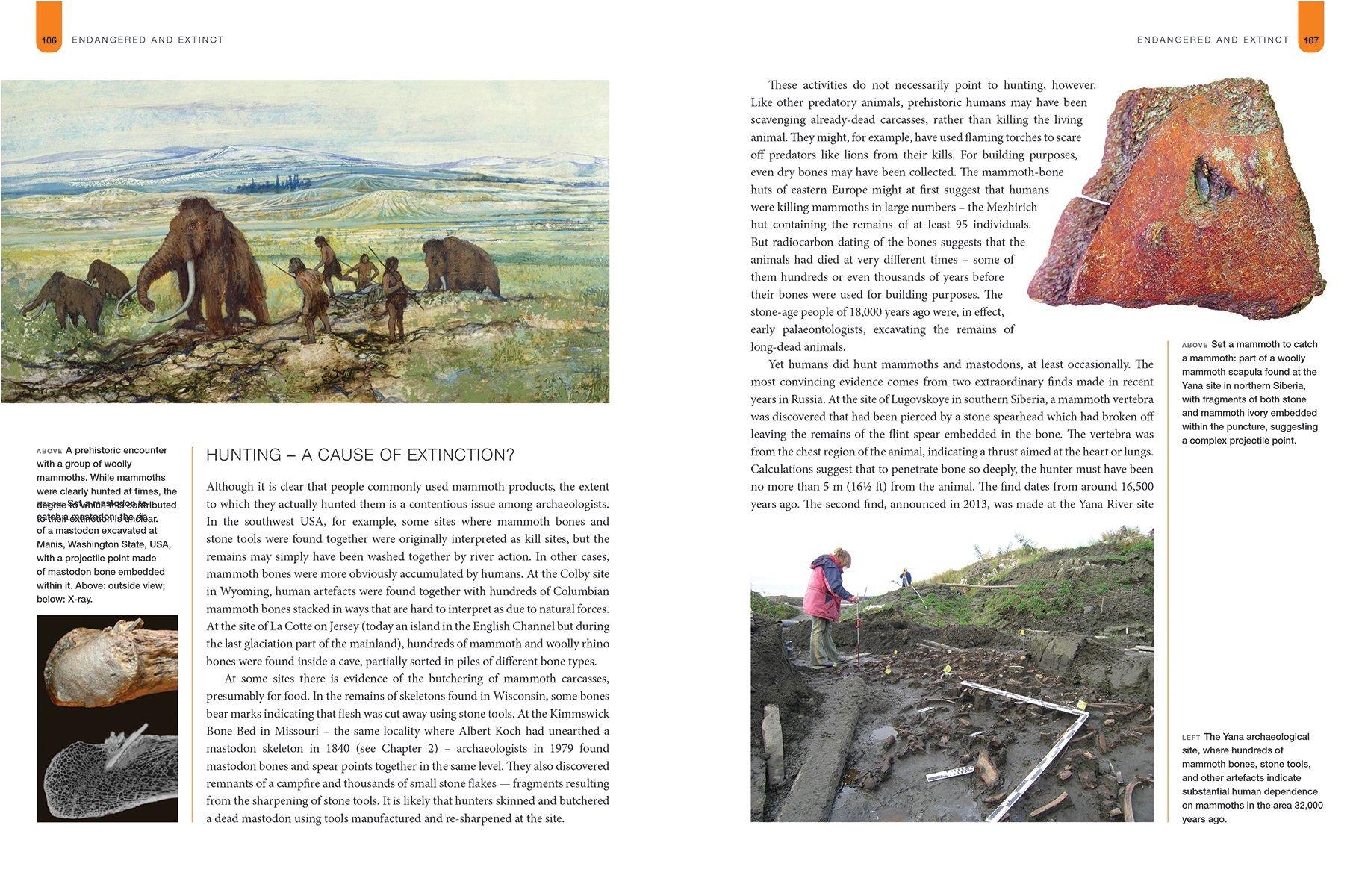 Mammoths & Mastodons of the Ice Age: Amazon.co.uk: Adrian Lister ...