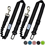 Zenify Dog Car Seat Belt Extendable Lead (2 Pack) - Bungee Leash for Dogs Puppies - Pet Adjustable Elastic Seatbelt Harness Vehicle Safety Birthday Road Trip Gift Idea (Black)