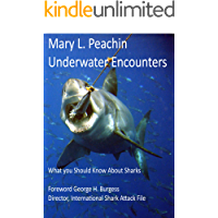 Underwater Encounters: What You Should Know About Sharks