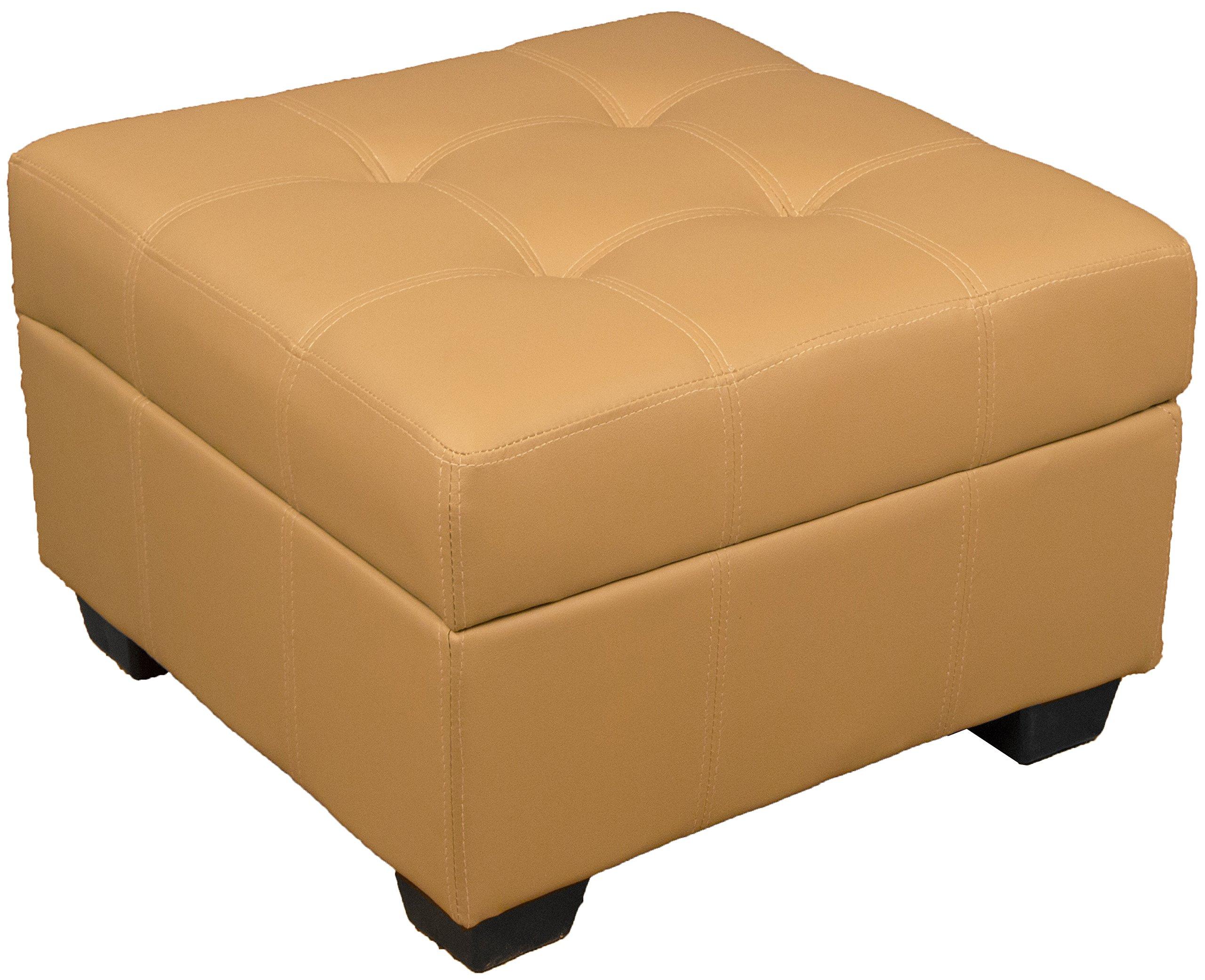 Vanderbilt 24-Inch Square Tufted Padded Hinged Storage Ottoman Bench, Leather Look Buckskin