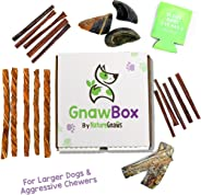 Gnaw Box – Nature Gnaws Dog Chew Treats - Subscription Box: Large Dog GnawBox