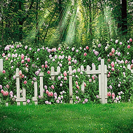 Fotografía Telón de fondo fondo flores jardín para boda 5 x 7 verde árboles selva exterior fondos: Amazon.es: Electrónica