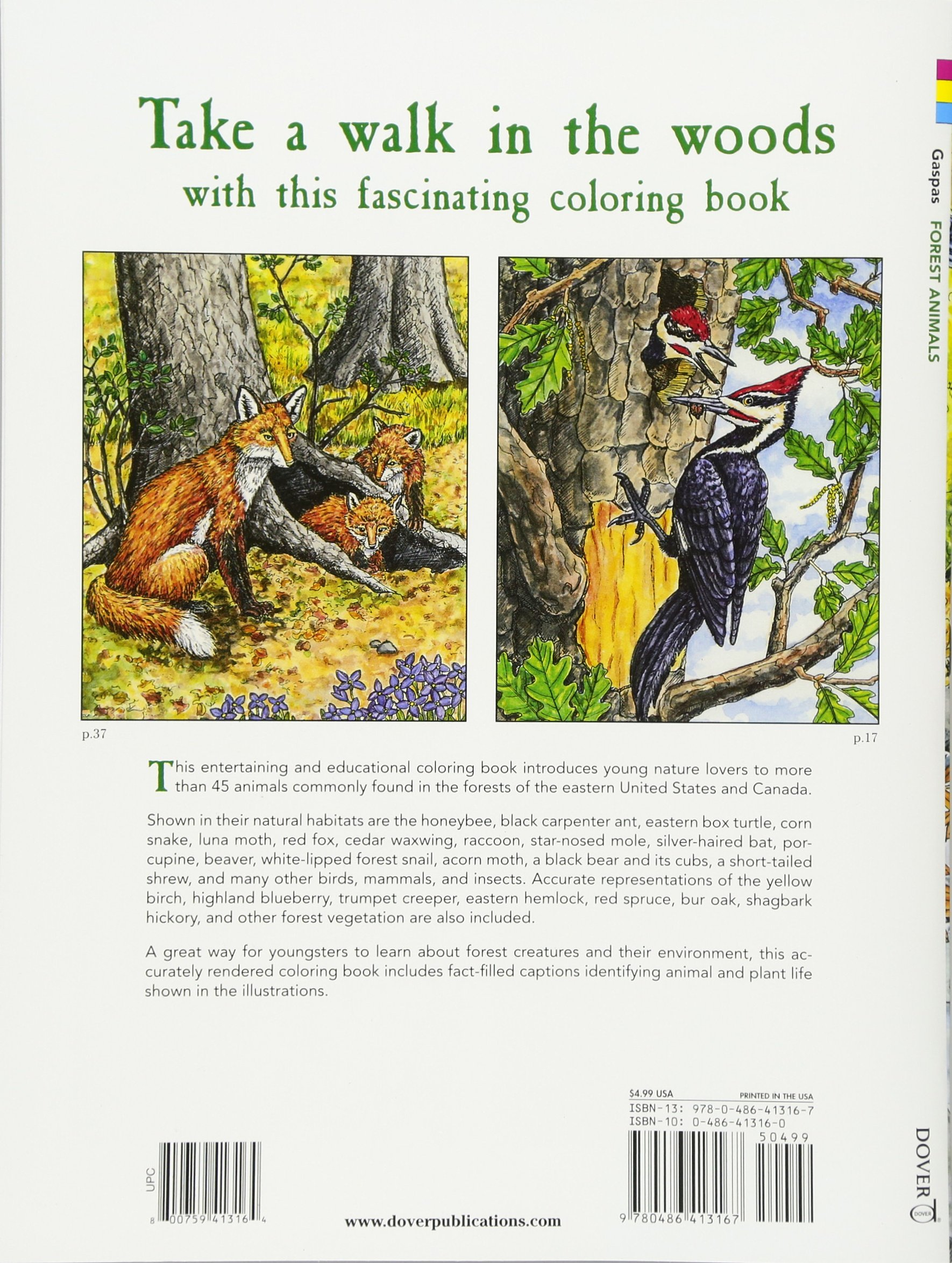 Forest Animals Coloring Book Dover Nature Dianne Gaspas Books 0800759413164 Amazon
