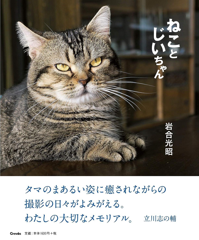 に勝るレイアこねるねこ語辞典 (Gakken Pet Books)