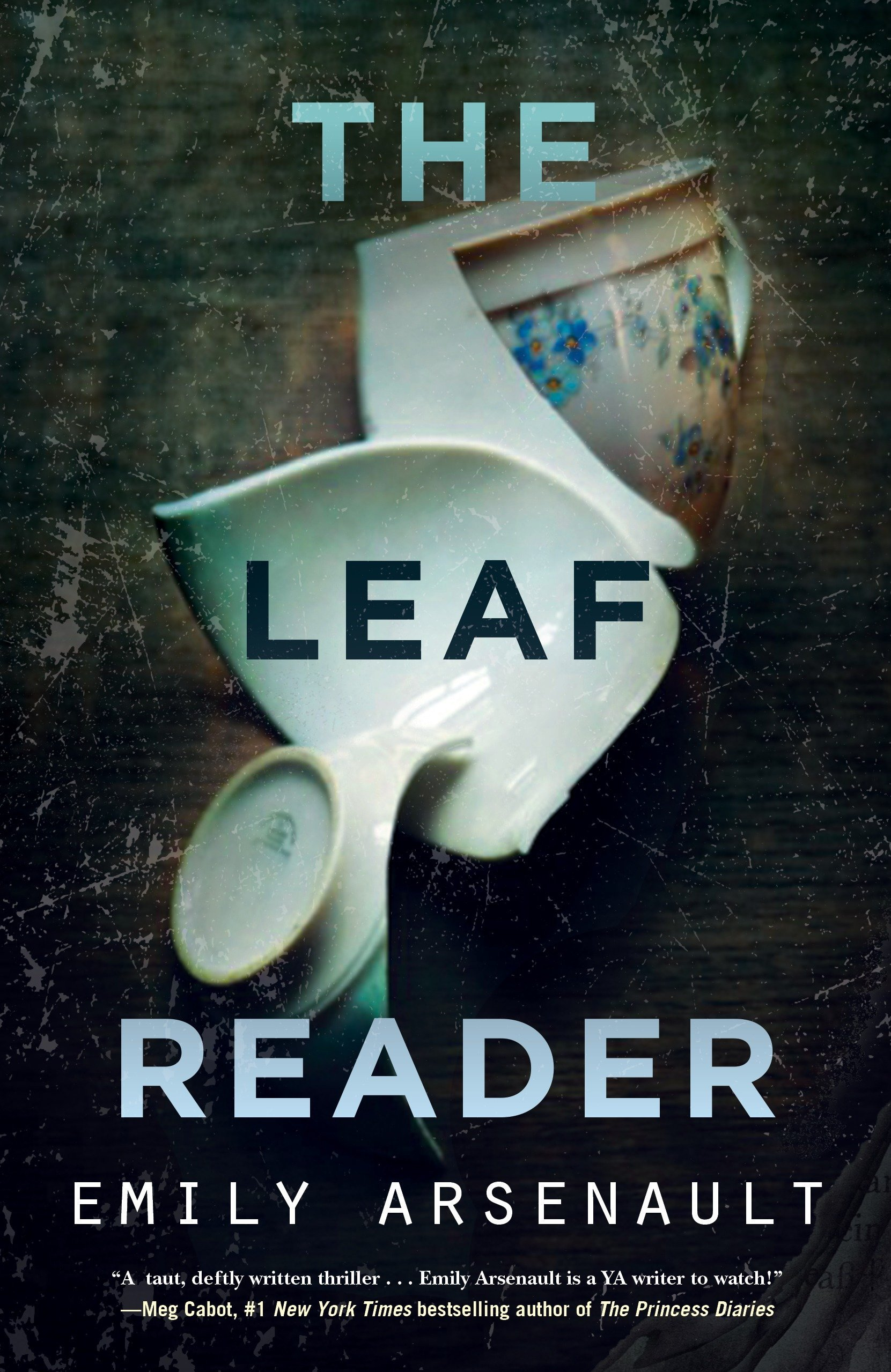 Amazon The Leaf Reader 9781616957827 Emily Arsenault Books