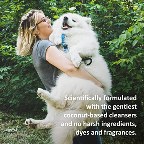 Pet Shampoos : Amazon.com: Veterinary Formula Clinical Care Hypoallergenic Shampoo for Dogs and Cats - No Harsh Ingredients - Great for Pets with Allergies ...