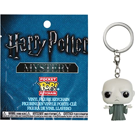 Amazon.com: Funko Voldemort Mystery Pocket POP! x Harry ...