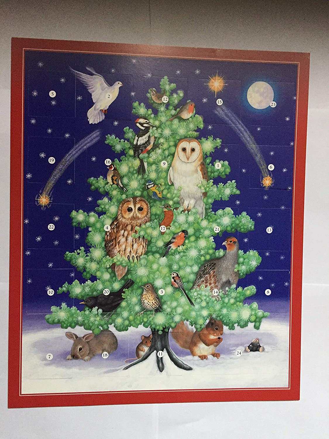 Birds in the Tree Traditional Card Advent Calendar Owl Robin Blue Tit Birds